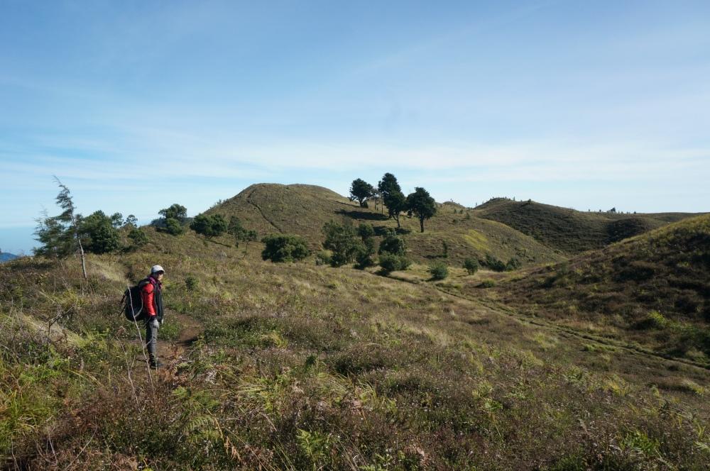 berjalan melewati bukit 'teletubies'